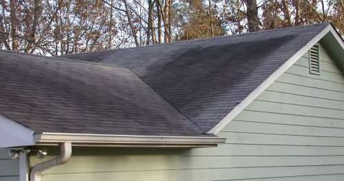 Great Step Roof Repair