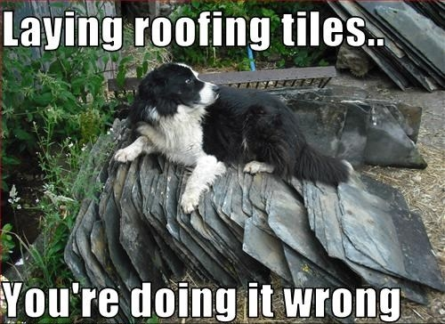 Just For Fun Roofing Humor Van Martin Roofing